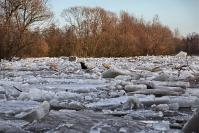 Zator lodowy na Warcie-3
