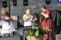 2015-08-23-swieto-chrzanu-033